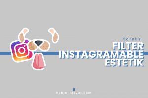 Filter Instagramable Kekinian dan Estetik